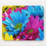 Fleurs bleues turquoises de marguerites de Gerber  Tapis De Souris