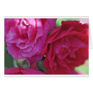 Fleurs Carte De Vœux
