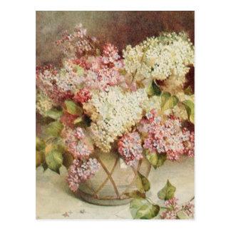 Fleurs Cartes Postales