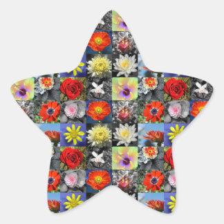 Fleurs d'amour sticker étoile