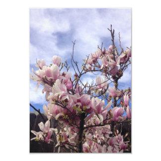 Fleurs d'arbre de tulipe. Soulangeana de magnolia Carton D'invitation 8,89 Cm X 12,70 Cm