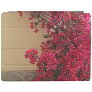 Fleurs de bouganvillée sur un vieux bâtiment protection iPad