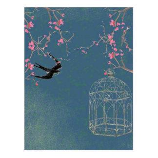 Fleurs de cerisier et carte postale de cage à