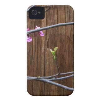 Fleurs de cerisier et Polonais en bois Coque Case-Mate iPhone 4