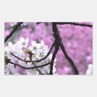Fleurs de cerisier japonaises autocollant en rectangle