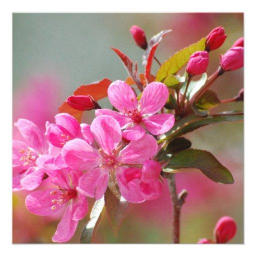 Fleurs de cerisier roses foncées cartons d'invitation