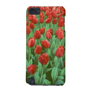 Fleurs de champ de tulipe pendant le ressort coque iPod touch 5G