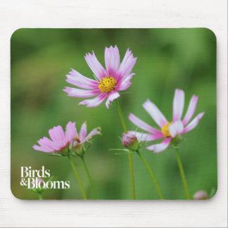 Fleurs de cosmos tapis de souris