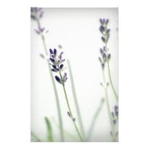 Fleurs de lavande papier à lettre personnalisé