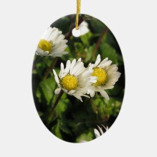 Fleurs de marguerite blanche sur l'arrière - plan ornement ovale en céramique