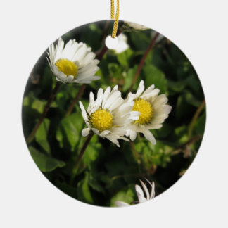 Fleurs de marguerite blanche sur l'arrière - plan ornement rond en céramique