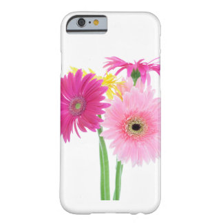 Fleurs de marguerite de Gerbera Coque Barely There iPhone 6