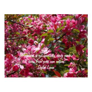 Fleurs de pomme sauvage avec la citation de Dalai Carte Postale
