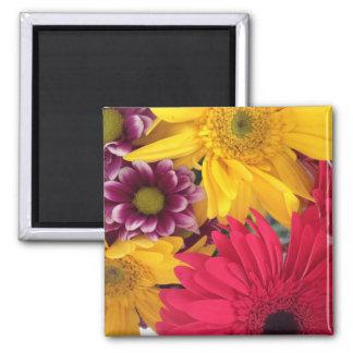 Fleurs de ressort magnets pour réfrigérateur