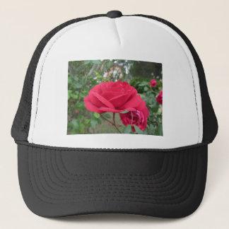 Fleurs de rose rouge avec des gouttelettes d'eau casquette