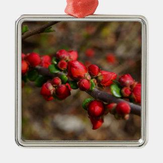 Fleurs de rouge de Woody Ornement Carré Argenté