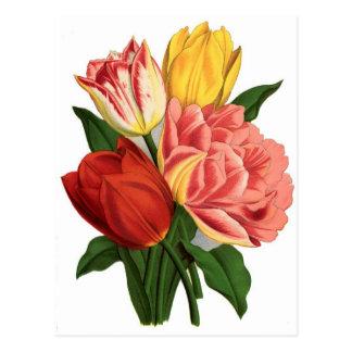 fleurs de vignes vintages de fleurs de tulipes carte postale