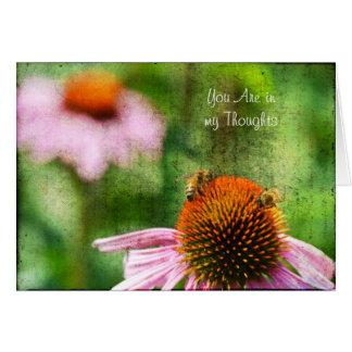 Fleurs d'echinacée de jardin d'été avec des abeill carte de vœux