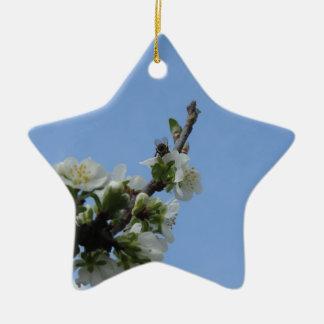 Fleurs d'impollinates d'abeille de prunier ornement étoile en céramique