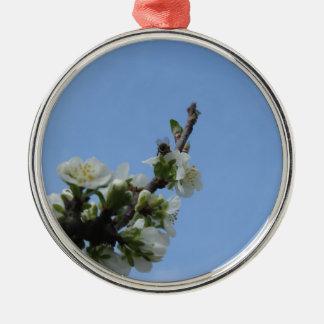 Fleurs d'impollinates d'abeille de prunier ornement rond argenté