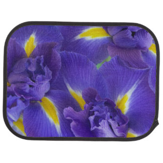 Fleurs d'iris tapis de sol