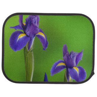 Fleurs d'iris tapis de voiture