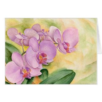 orchidée rouge cartes, invitations, photocartes et faire-part