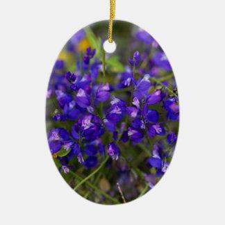 Fleurs du commandant de Polygala de Milkwort Ornement Ovale En Céramique