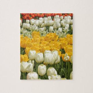 Fleurs en abondance puzzle