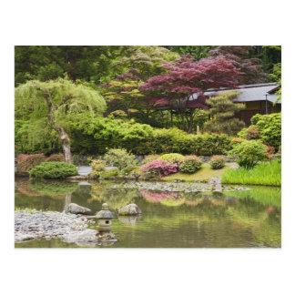 Fleurs en fleur au jardin japonais, carte postale