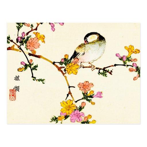 Fleurs et oiseau colorés japonais cartes postales