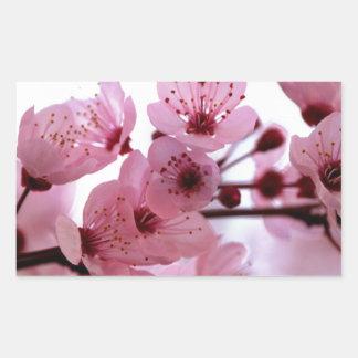 Fleurs japonaises de cerisier autocollants