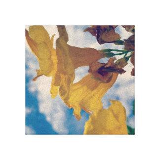 Fleurs jaunes toile