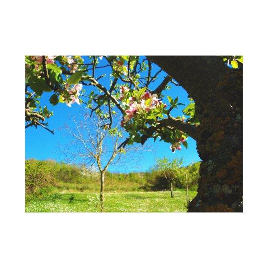 Fleurs - panoramas toile