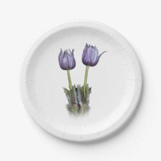 Fleurs pourpres de crocus assiettes en papier