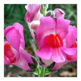 Fleurs roses de muflier carton d'invitation  13,33 cm