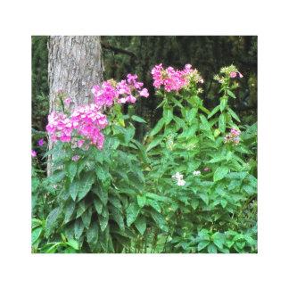 Fleurs roses et toile enveloppée par arbre