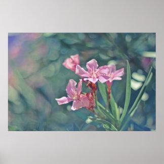 Fleurs roses sensibles affiches