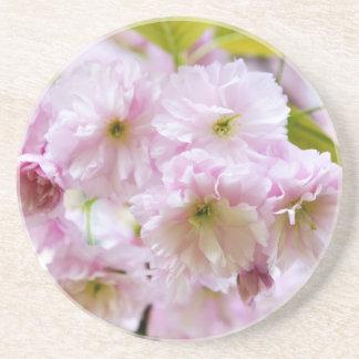 Fleurs roses sur le cerisier japonais dans la dessous de verre