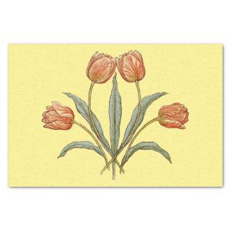 Fleurs rouges assez florales de tulipe sur la papier mousseline