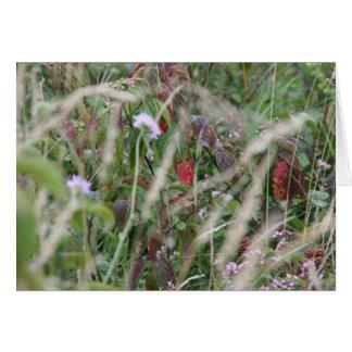 Fleurs sauvages, carte de voeux de collines de