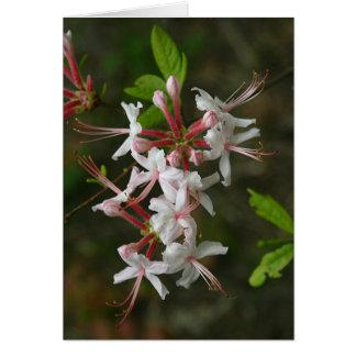 Fleurs sauvages de PA - carte pour notes sauvage
