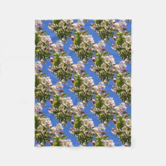Fleurs sauvages de pommier