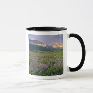 Fleurs sauvages de prairie le long de lac mug