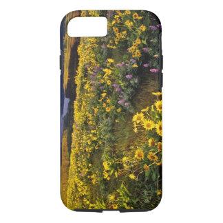 Fleurs sauvages de ressort en abondance chez Tom Coque iPhone 7