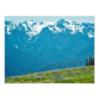 Fleurs sauvages et montagnes impression photo