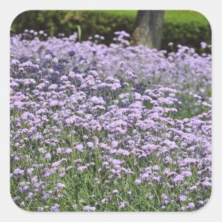 Fleurs Sticker Carré