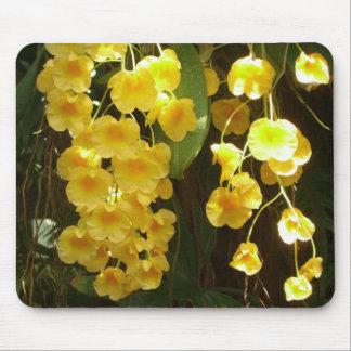 Fleurs tropicales accrochantes d'orchidées jaunes tapis de souris