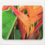 Fleurs tropicales brillantes de Heliconia Tapis De Souris