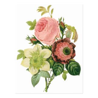 Fleurs vintages clématite de roses d anémone par